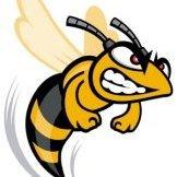 HGGS Hornet