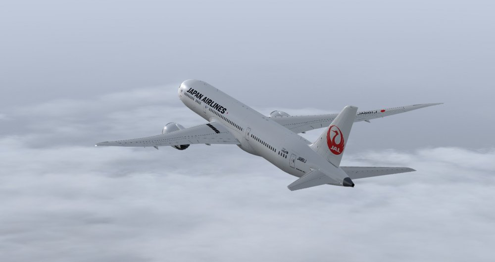 JAL7.jpg